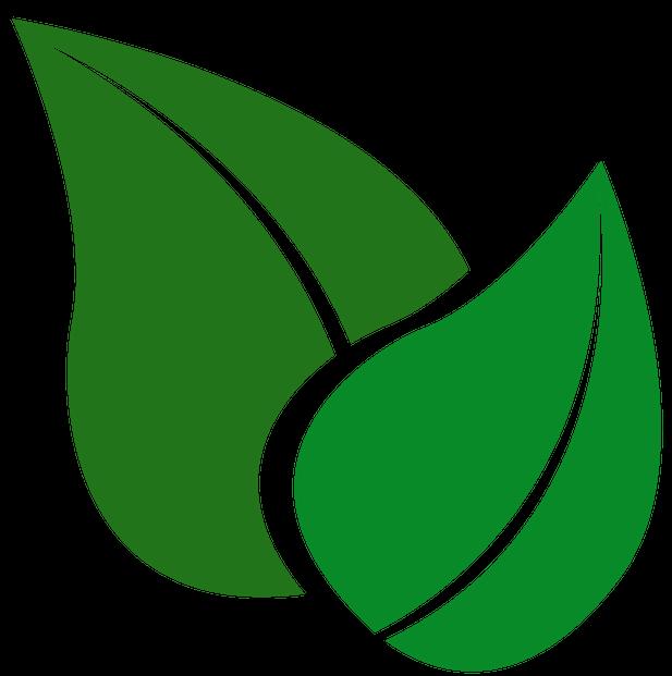 HOMEOGUM : Le 1er complément alimentaire efficace alliant Homéopathie et Phytothérapie et traitement homéopathique : Anti stress | Maladie de Hashimoto