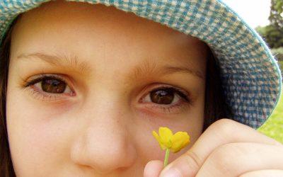 Assimilation d'un traitement en homéopathie et phytothérapie