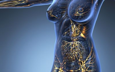 La Lymphe : liquide biologique de défense